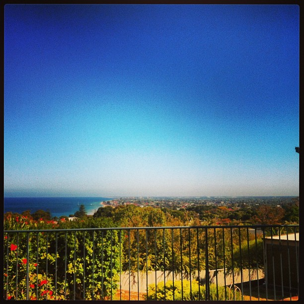Marino View